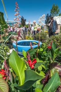 Show visitors enjoying The Teacup Garden